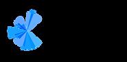 PCY Logo RGB BLK2_Horizontal No Tagline.