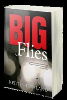 Big Flies 3D.png