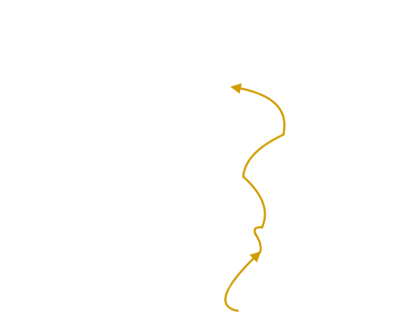Chine fin.png