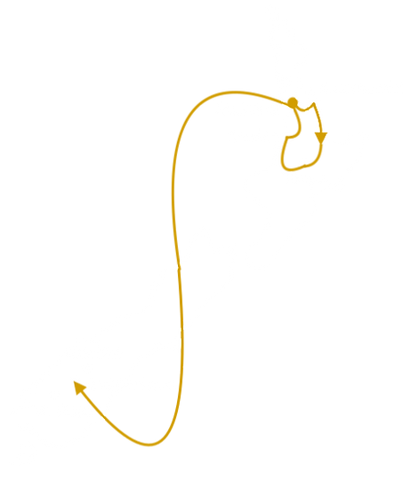 Itinéraire 3 semaines Nouvelle-Zélande
