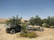 סוכה במדבר, אירוח אקולוגי במצפה רמון