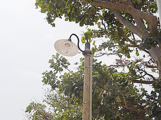 竹富町の公共事業