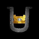 Totle Fit Udeesa Logo.png