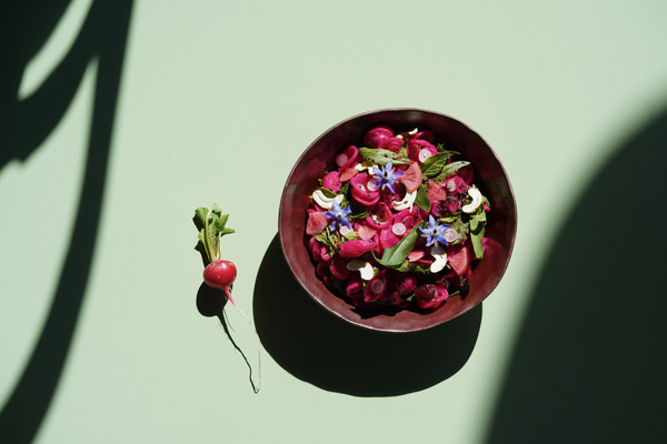 Salade d'orecchiette, betterave, radis roses