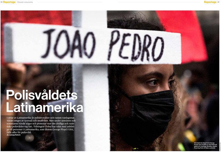 Joao Pedro Linnea.jpg
