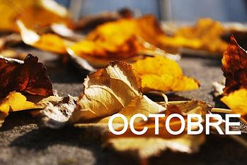 Golden Leaves_edited.jpg
