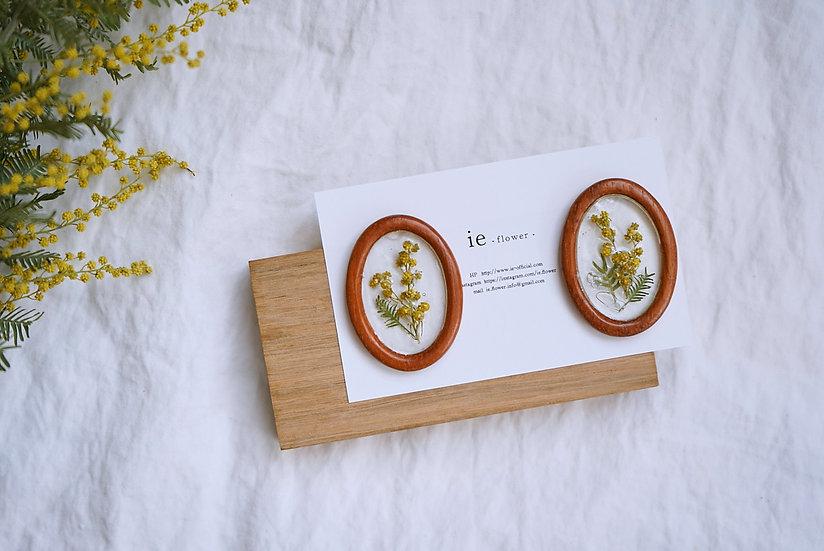 mimosa  Pierce <wood>