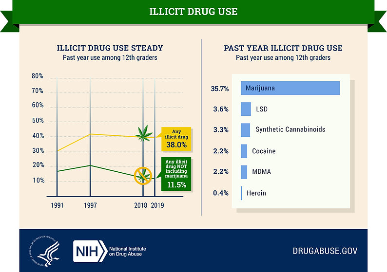nida_mtfinfographic2019_illicit drug use