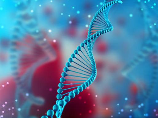 Intelligent Life Part 1: DNA