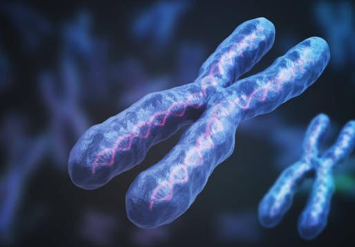 Epigenetics Part 3: Instruction Manual