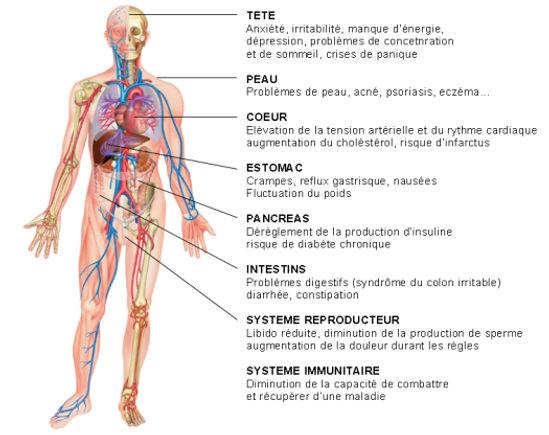 corps-humain.jpg