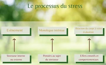 processus-stress-e1597403898796.png