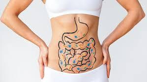 L'importance de nos intestins.