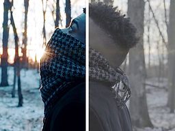 Cold lut.jpg