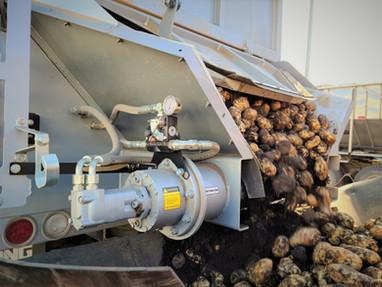 Potato Live Bottom Bulk Bed.jpg