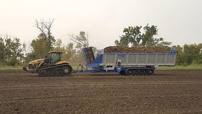 Crop Shuttle Cucumber Harvest with a Crop Cart