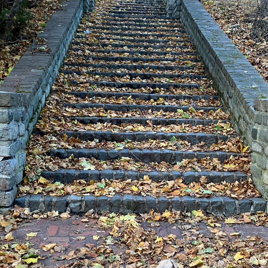 Stairs at Thornden Park