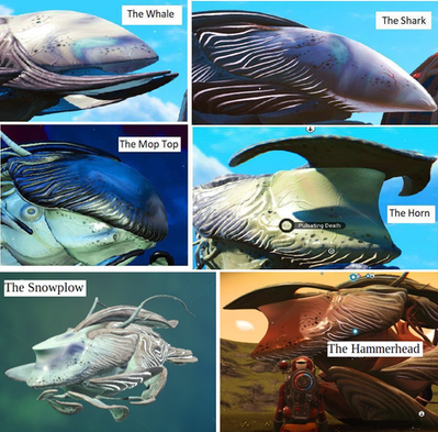 Types of Bioship (Heads).png