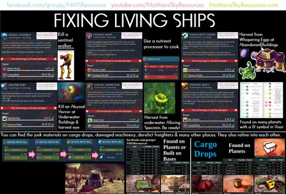 Living Ships - Repair.png
