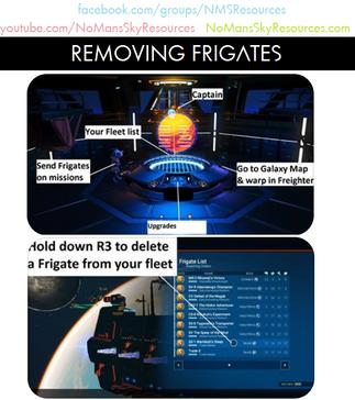 Frigates - Delete.png