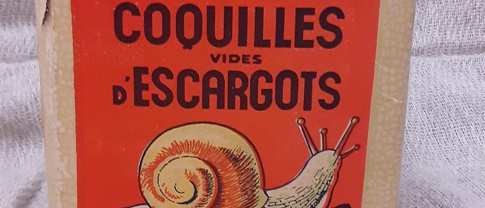 French snail shells