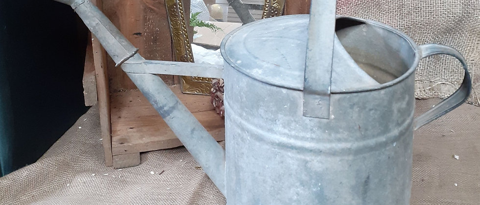 Galvanised Watering can and rose