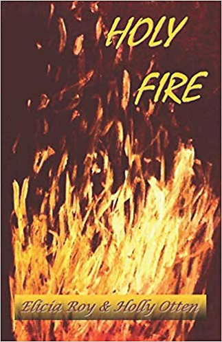 Holy Fire paperback