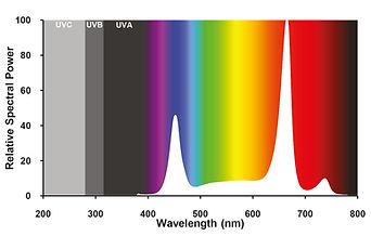 fullspectrumplus_spectrum.jpg