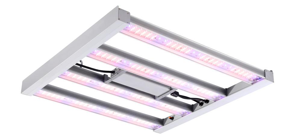 06-Sylvania-GroXpress-LED.jpg