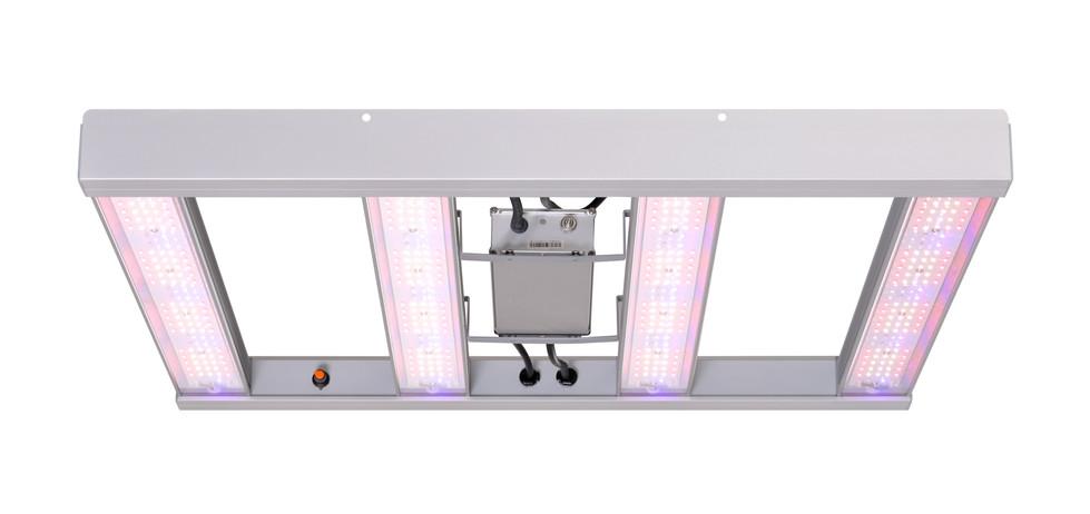 08-Sylvania-GroXpress-LED.jpg