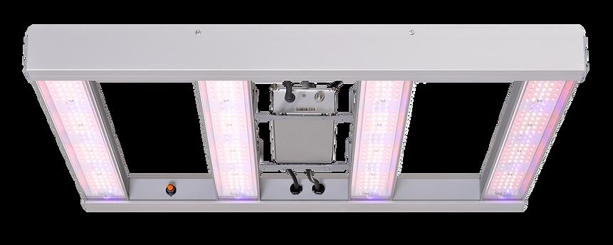 groxpress_LED_header.png