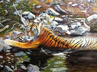 Rathbone Tiger