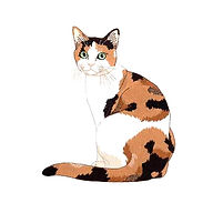 calico-cat-clipart-cartoon-446684-513388