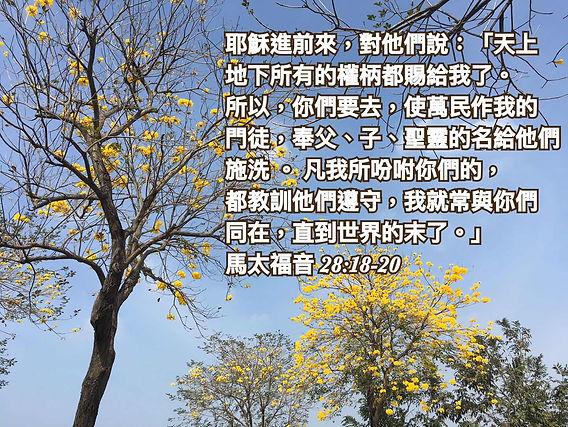 主页_3.jpg