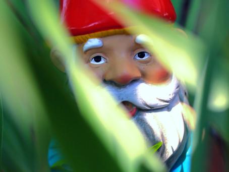 Hey Wisconsin Gnomes!