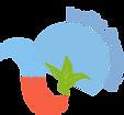 India-organic-logo.png