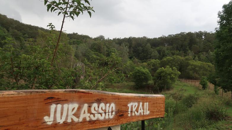 Jurassic Trail Hike