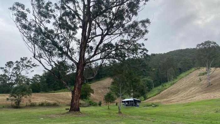 Gumtree Valley