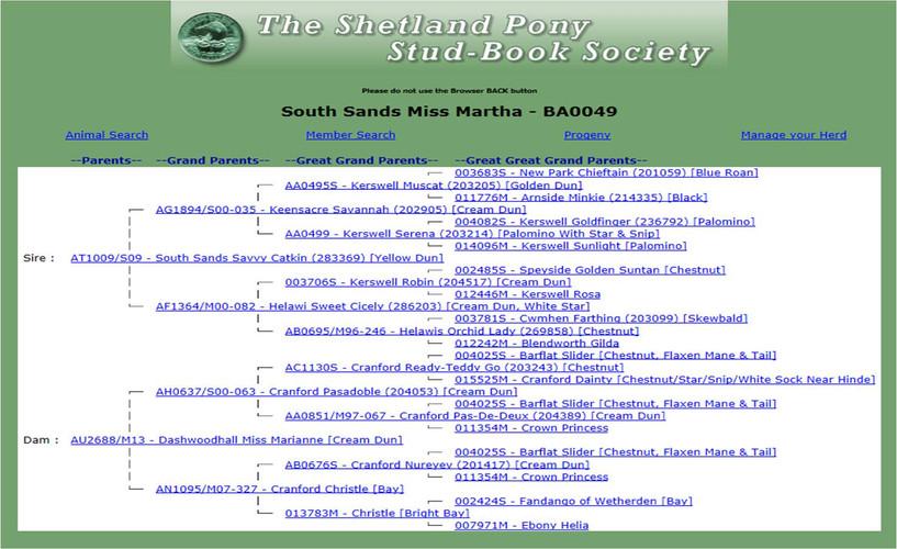 South Sands Miss Martha Pedigree.jpg
