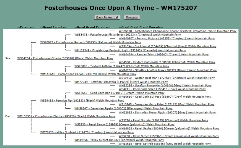 FOSTERHOUSES ONCE UPON A THYME
