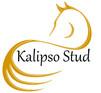 New 2018 Stud Logo no website.jpg