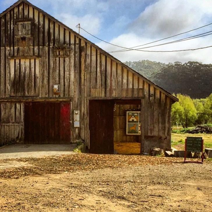 Harley Farms, Pescadero, California.