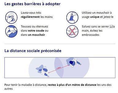gestes barrières GOUV.FR (2).jpg