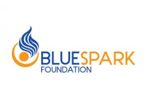 BlueSpark foundation grants