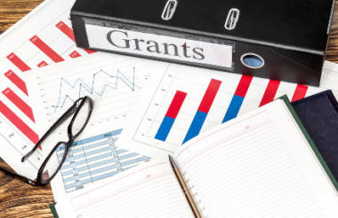 Which charities get government grants?
