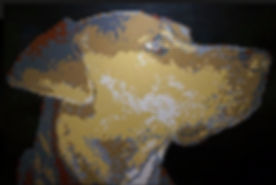 Clyde Dog_edited_edited.jpg