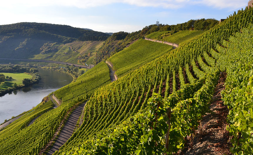 Mosel by Baur au Lacs vins ch