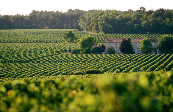 Bordeaux by Great wine news