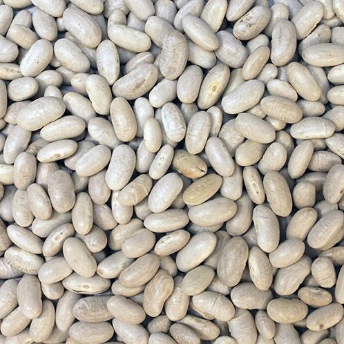 Cannellini Beans (Organic)  (per 100g)