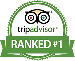 tripadvisor-rank-1-in-city-vienna.png
